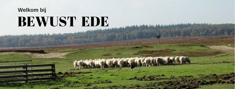 Bewust Ede biedt eenwarm netwerk waar ontmoeten,inspireren en samenwerken centraal staan.